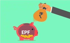 THE VERDICT: EMPLOYEE PROVIDENT FUND