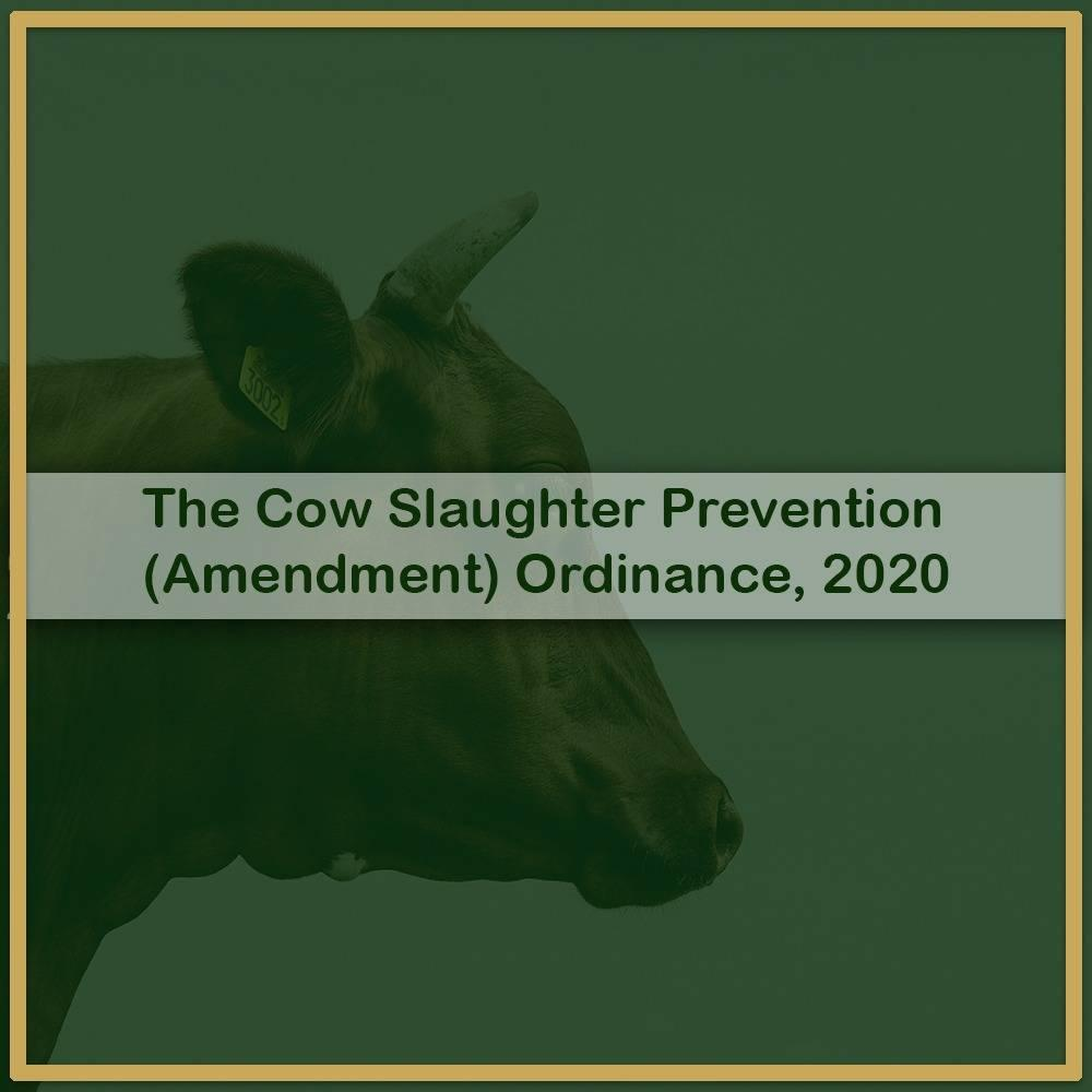 Cow Slaughter Prevention (Amendment) Ordinance, 2020