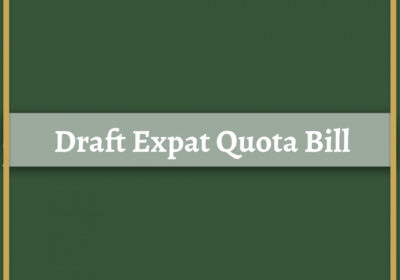 Draft Expat Quota Bill