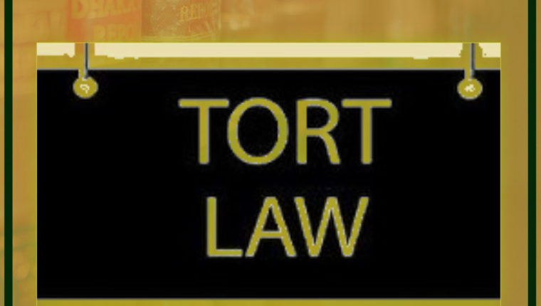 VICARIOUS AND STRICT LIABILITY UNDER LAW OF TORTS