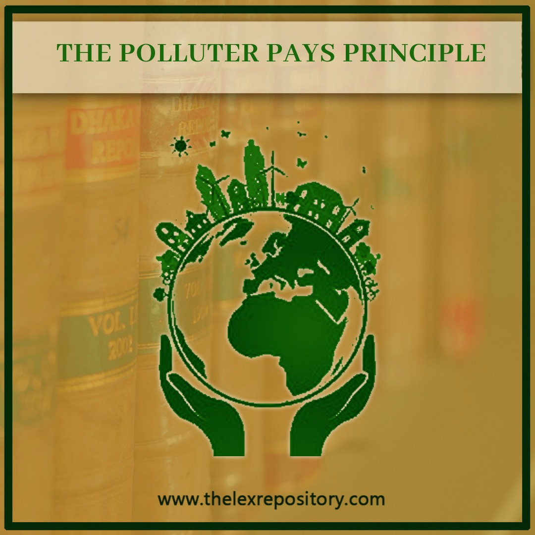 THE POLLUTER PAYS PRINCIPLE